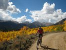Biking with changing aspen colors