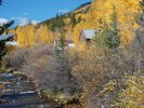 Creek and aspen in St Elmo, CO