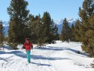 Cross Country Skiing the Leadville Mineral Belt Trail