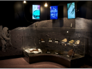 National Mining Hall of Fame Lunar exhibit
