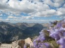 View from near the top of Mount Princeton