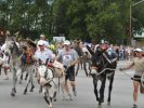 Burro Race at Gold Rush Days, Buena Vista, CO